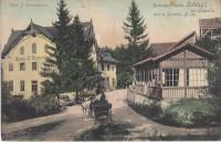 NÖ: Gruß aus Schlagl bei Gloggnitz Hotel J. Westermayer 1920