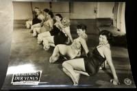 Film Aushangfoto: Das Geheimnis der Venus ( 1954 ) Jugend und Schönheit ( 3 )