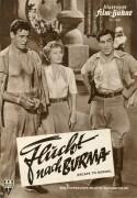 3040: Flucht nach Burma ( Allan Dwan ) Barbara Stanwck, Robert Ryan, David Farrar, Murvyn Vye, Lisa Montell