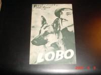 806: Lobo   Francis MacDonald  Wolfshund Cäsar