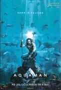 518: Aquaman ( James Wan ) ( DC Comics ) Jason Momoa, Amber Heard, Dolph Lundgren, Nicole Kidman, Julie Andrews, Patrick Wilson, Willem Dafoe, Tahlia Jade Holt, Djimon Hounsou, Randall Park, Temuera Morrison,