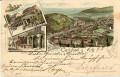 Böhmen und Mähren: Gruß aus Carlsbad Karlsbad Litho 1893 ! Schlossbrunn usw.