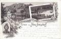 Deutschland: Gruß aus Neu - Jonsdorf Litho 1896 Restaurant zur Gondelfahrt ,