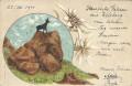 Italien: Gruß aus Welsberg 1900 Schmuckkarte - Edelweiss - Gemse In Vedetta