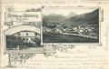 Italien: Gruß aus Welsberg Pusterthal 1898 Gasthof zum weissen Lamm Edelweiss