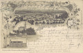 NÖ: Gruß aus Amstetten NÖ. Litho 1899 Schloss Wallsee Donau, Rathaus usw..