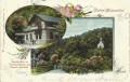 NÖ: Gruß aus Baden - Helenenthal 1902 Cholera Kapelle und Kapelle Mariahilf