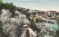 NÖ: Gruß aus Waidhofen an der Thaya 1955 Niedertal