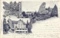 Schweiz: Gruß aus Rigi Felsenthor 1902 Hotel Pension usw