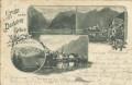 Steiermark: Gruß aus dem Dachstein Gebiete 1898 mit Hallstatt Edelweiss usw...
