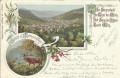 Steiermark: Gruß aus Mürzzuschlag Litho 1900 Jagen Hirsch Edelweiss usw.
