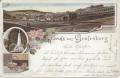 Gruß aus Gräfenberg in Böhmen Litho 1899 Denkmahl, Bad, Panorama usw..