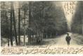 Gruß aus der Ukraine Worochta Bopoxta 1905 nach Wien ( Im Walde )