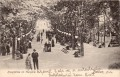 NÖ: Gruß aus Baden 1906 Hauptallee im Kurpark,